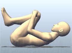 ヨガ 胎児のポーズ ワーユ・ムクティ・アーサナ Vayu Muktyasana