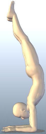 ヨガ 孔雀(クジャク)の羽のポーズ